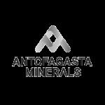 ANTOFAGASTA MINERALS CRUZEIRO GOMAS